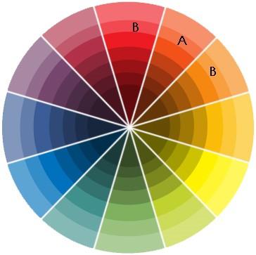 Ruota dei colori complementari make up